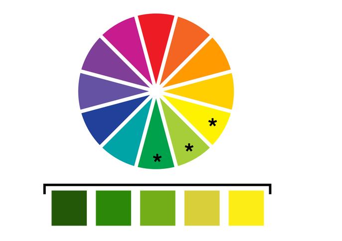 Analogous – Phối màu tương đồng.